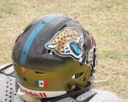 Jaguares Ojo de Agua