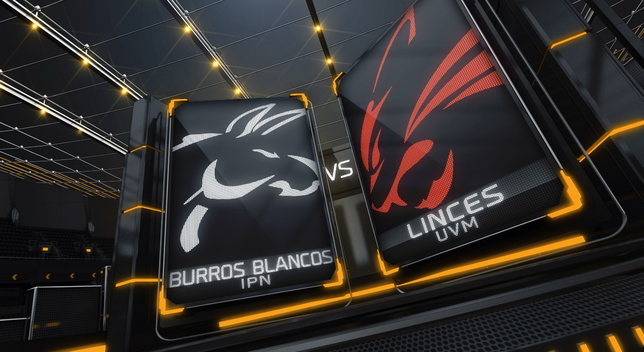 Burros Blancos vs Linces