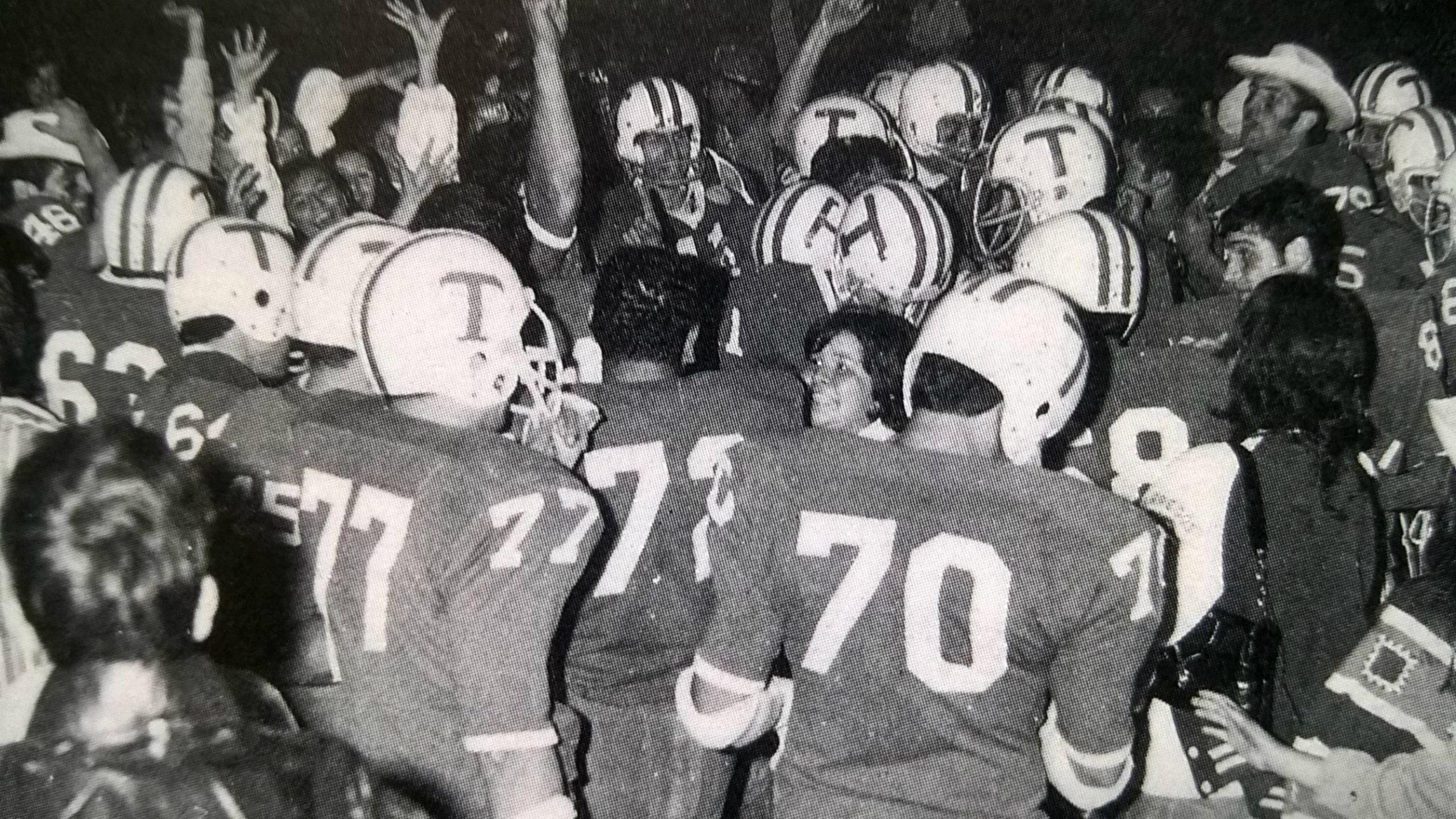 Borregos Salvajes 1971